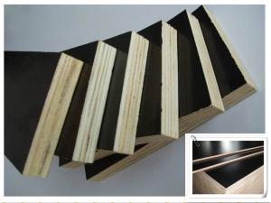 天津建筑模板